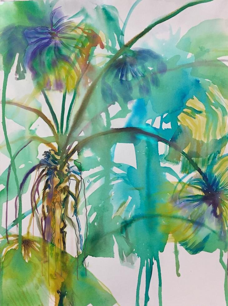 Fan Palm forest I 2019