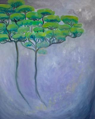 Raintrees in The Mowbray