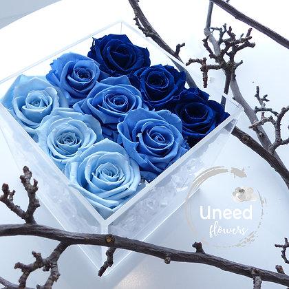 UN-0217 Nine Roses in an Acrylic Box (Blue & Purple)