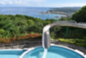 rainforest-bobsled-jamaica.jpg