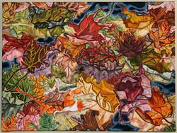 Fall Color Study