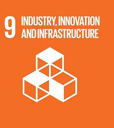 SDG 9 .jpg