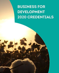 BUSINESS FOR DEVELOPMENT 2020 CREDENTIAL