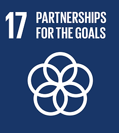 E_SDG-goals_icons-individual-rgb-17.png