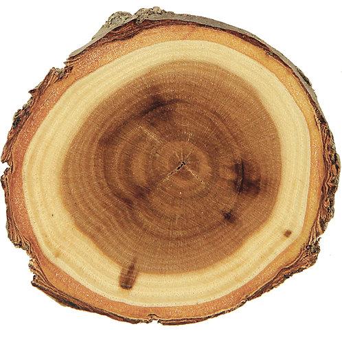 Old West Log Elmwood Magnet
