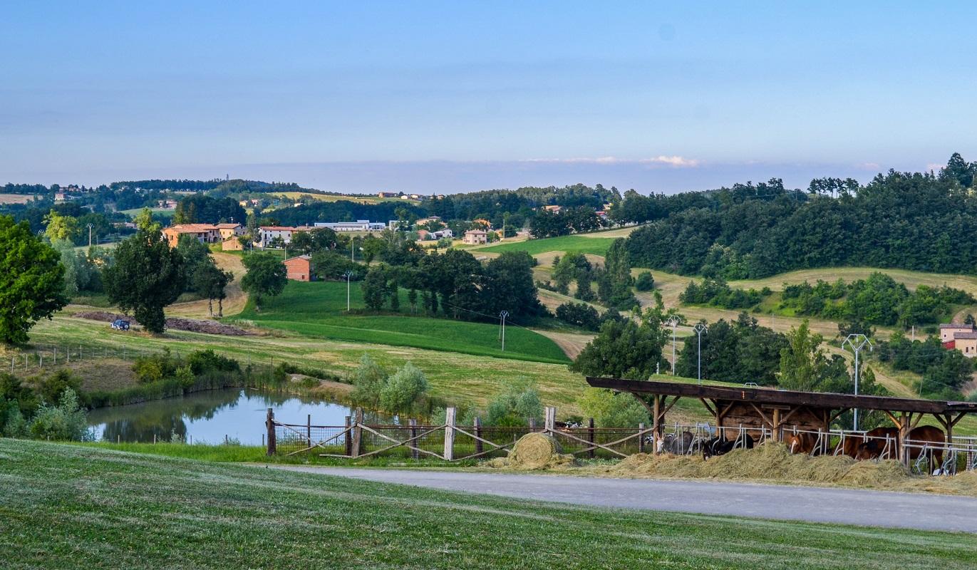 rid_panorama_cavalli_asinelli
