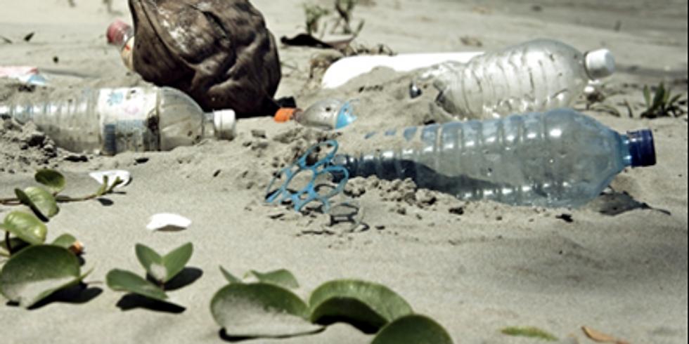 Planète mer : quel avenir pour les océans ? Conférence de Fabienne GOUX-BAUDIMENT, prospectiviste