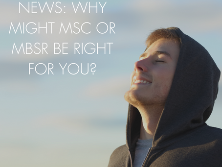 WHY MIGHT MSC OR MBSR BE RIGHT FOR YOU?