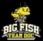 Big Fish Team Doc Logo.png
