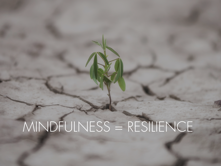 MINDFULNESS = RESILIENCE