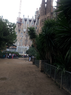 harmony - Trees N Sagrada Familia