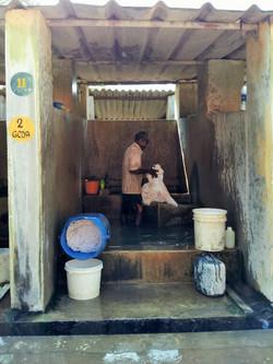 Harmony- The Indian Laundry.jpg