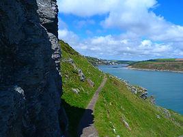 salcombe-coastal-path.jpg
