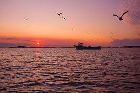 Cornwall fishing boat trip