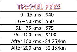 TRAVEL FEES 2019.JPG