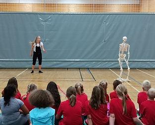 Sceletus.jpg