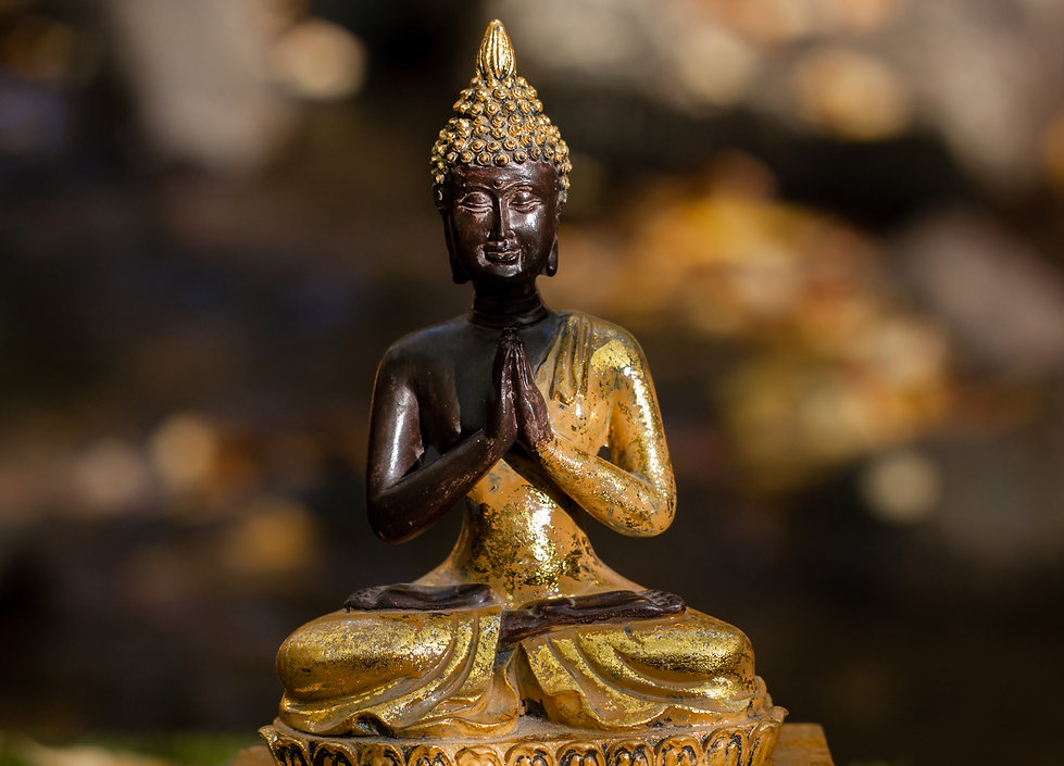 Buddha figure illuminated by the sun.jpg