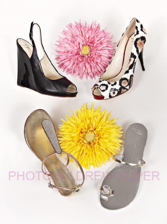 LadysShoes