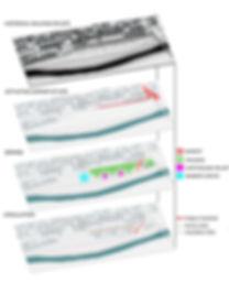 Site Diagrams.jpg