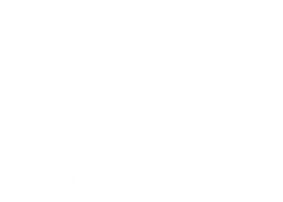 Trinity_Systems_White.png