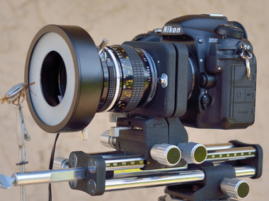 Focus-Stacking: Camera Hardware Suggestions
