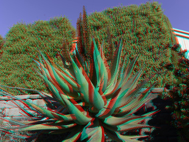 Create a 3-D Anaglyph with Zoner Photo Studio