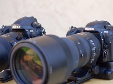 Nikon D500 Un-cropped versus D850 Cropped Shot Comparison