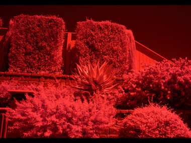 White Balance for Infrared Photography