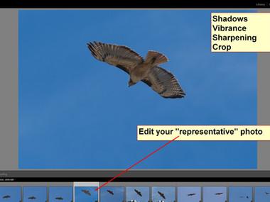 Lightroom Batch Editing Tutorial