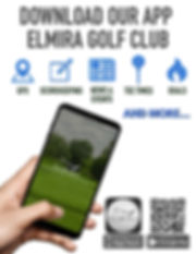 Golf Cart Flyer.jpg