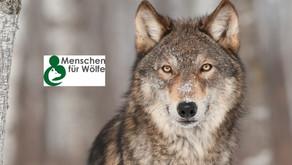 """Spenden und gewinnen: """"Menschen für Wölfe"""" ist jetzt auch eine Initiative"""