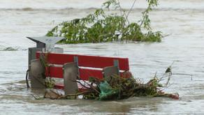 """""""Menschen für Wölfe"""" spendet 20 Prozent pro Spende für gerettete Tiere in den Hochwassergebieten"""