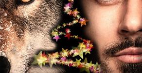 """""""Menschen für Wölfe"""" wünscht allen Wolfsfeunden fröhliche Weihnachten"""