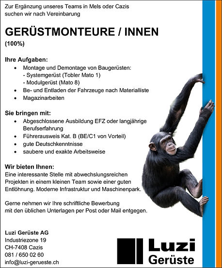 Inserat-Monteur-für-auf-HP-993x1200.jpg