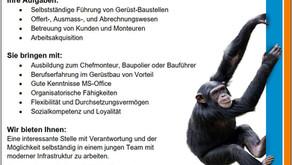 Bauführer/in - Mach dich nicht zum Affen - komm zu uns....