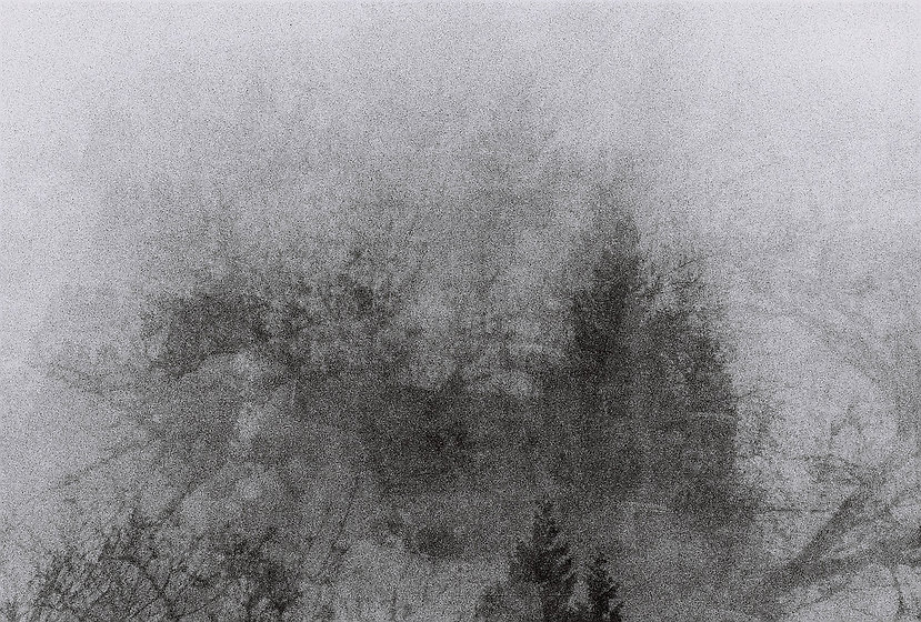Kate Guić photography