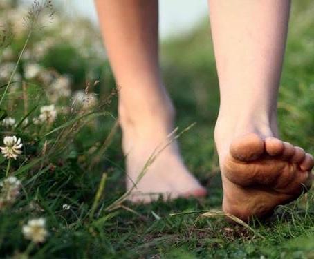 Grounding: saiba como se enraizar para ter foco, presença e força