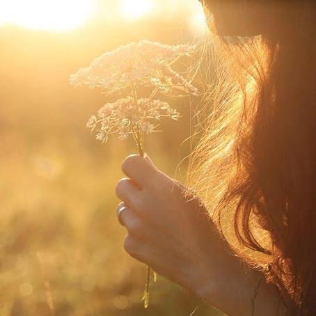 Experimente os 3 melhores florais para superar o sentimento de tristeza
