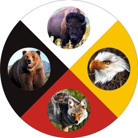 15/07/2020 Workshop Alma da Casa: Encontre o animal de poder da sua casa