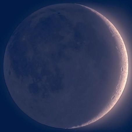 Rituais de Banho de Rosas para fazer na lua nova