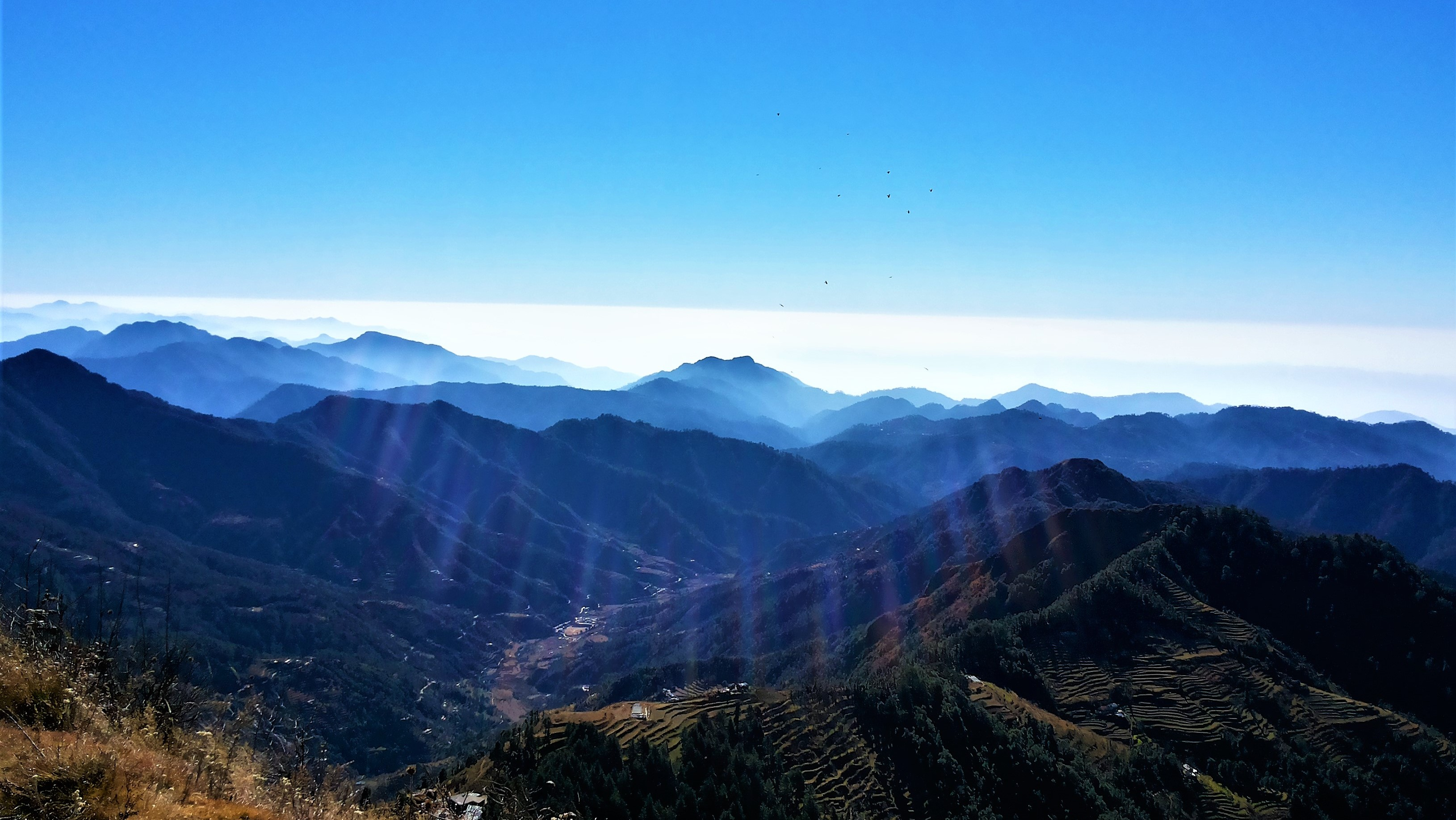 The blue mountains, Dhanaulti, 2013