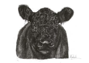 hello cow.jpg