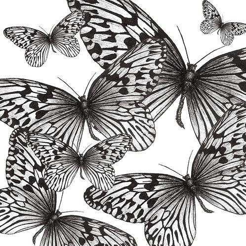 Flutter of Flutterby Butterflies Print