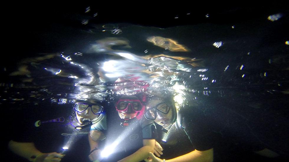 night time snorkeling