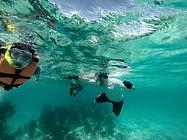 Local Tours Riviera Maya