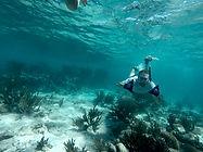Best Snorkeling Tulum