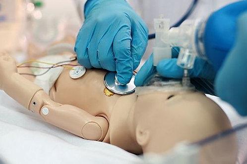 ARC Pediatric Advanced Life Support Instructor