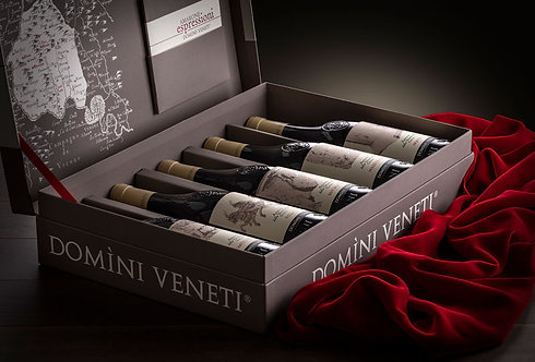 Amarone Espressioni Domini Veneti