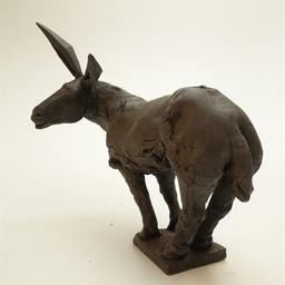 L'âne capte