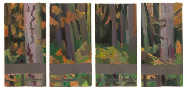 Doug Fir Forest